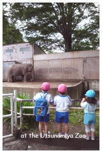 宇都宮動物園にて