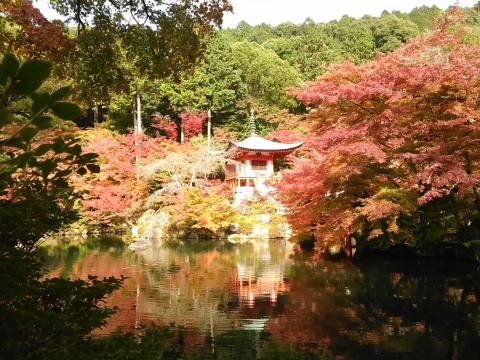 池と紅葉とお堂