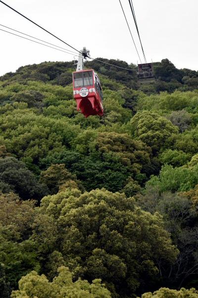 鉢伏山・標高は260m