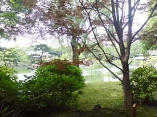 清澄庭園・自由広場方面より池を望む