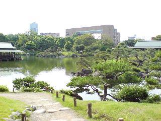 清澄庭園・富士山麓