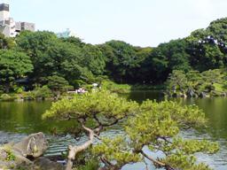 清澄庭園・磯から鶴島方向
