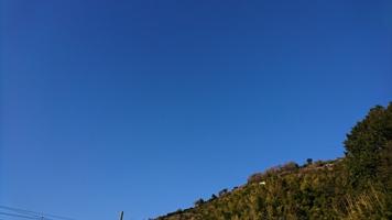 20170205の朝の裏山の青空