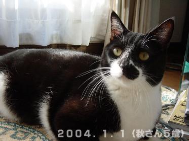 秋さん20040101