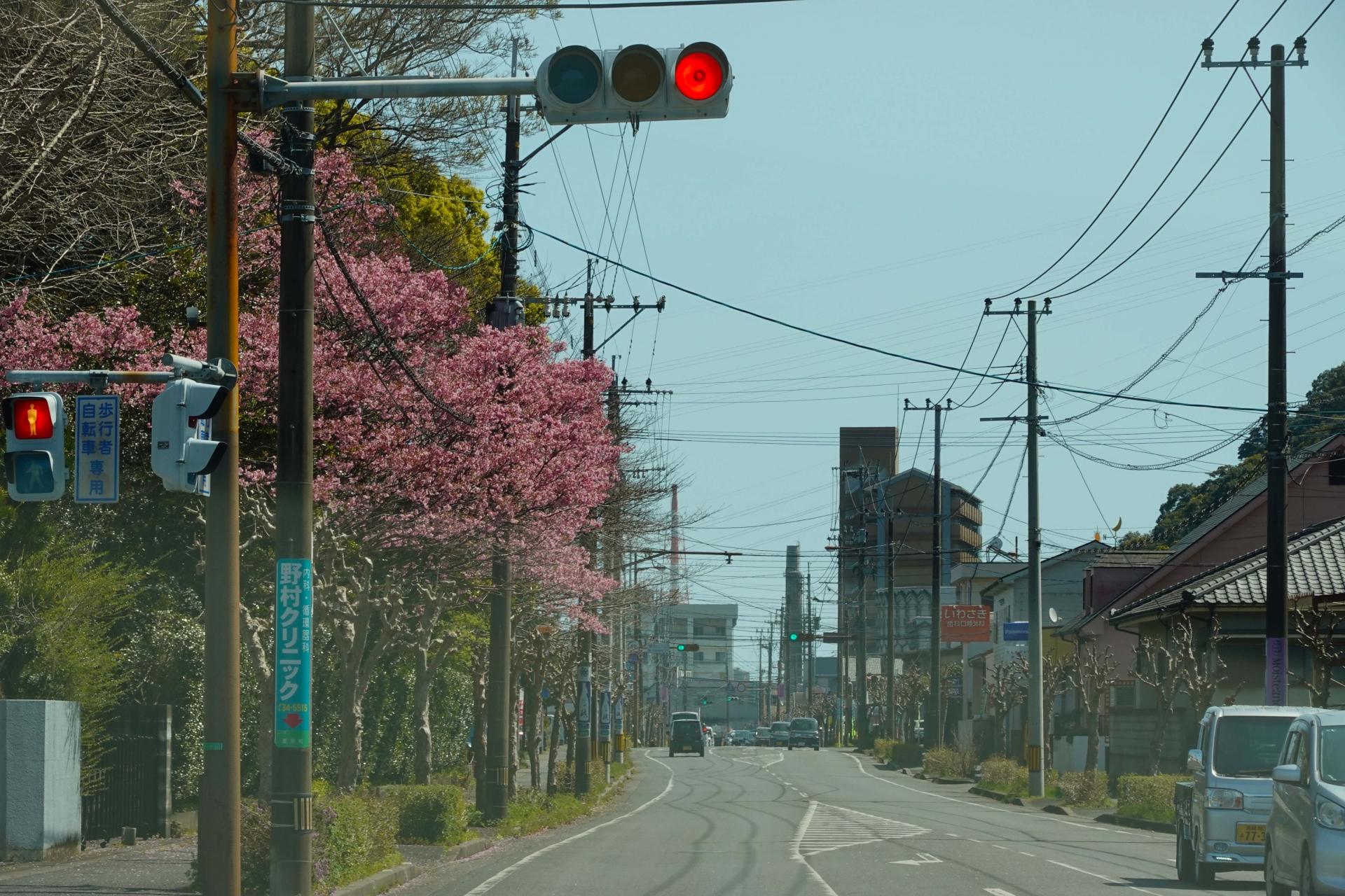 春日神社横