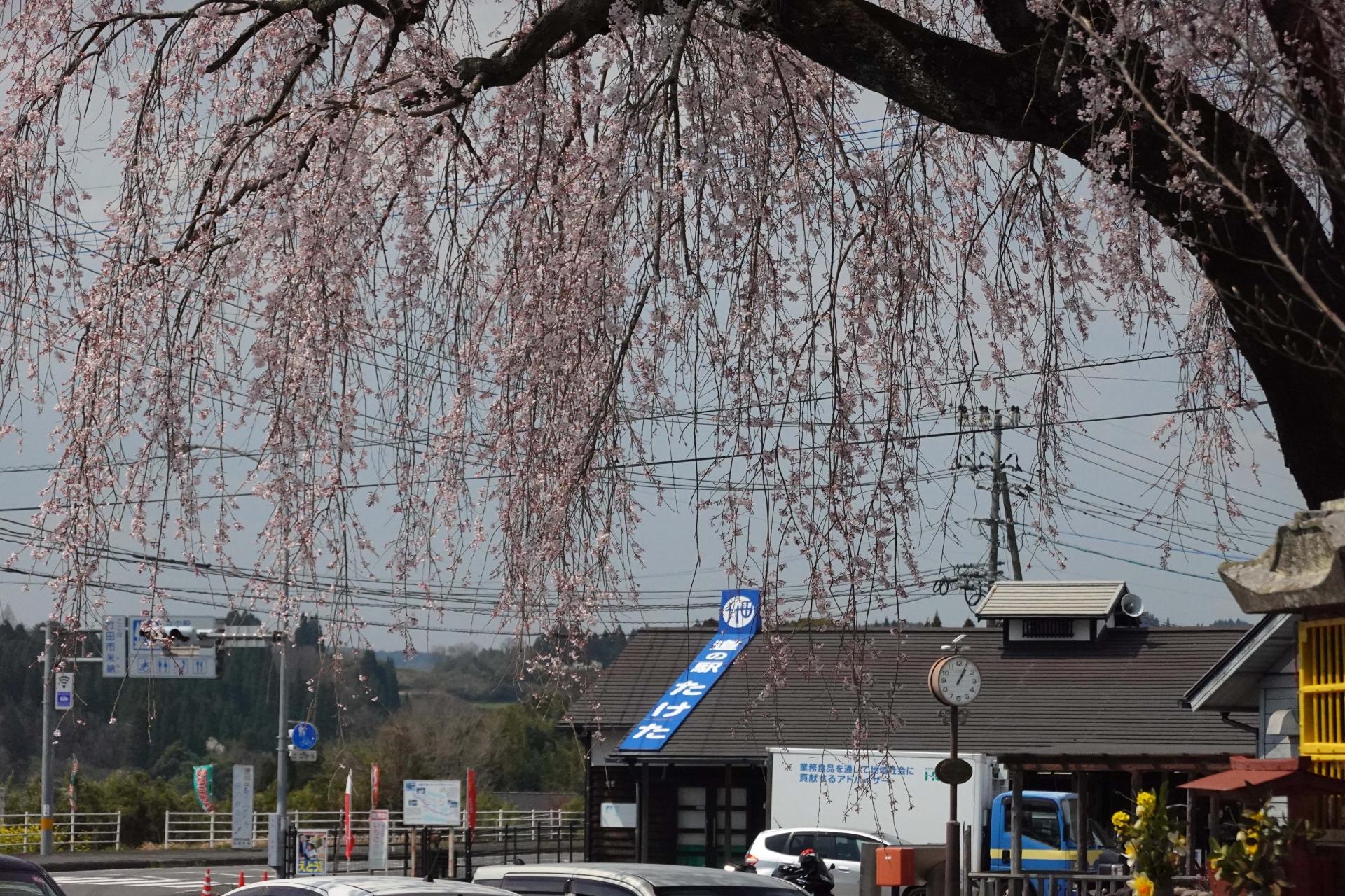 道の駅竹田