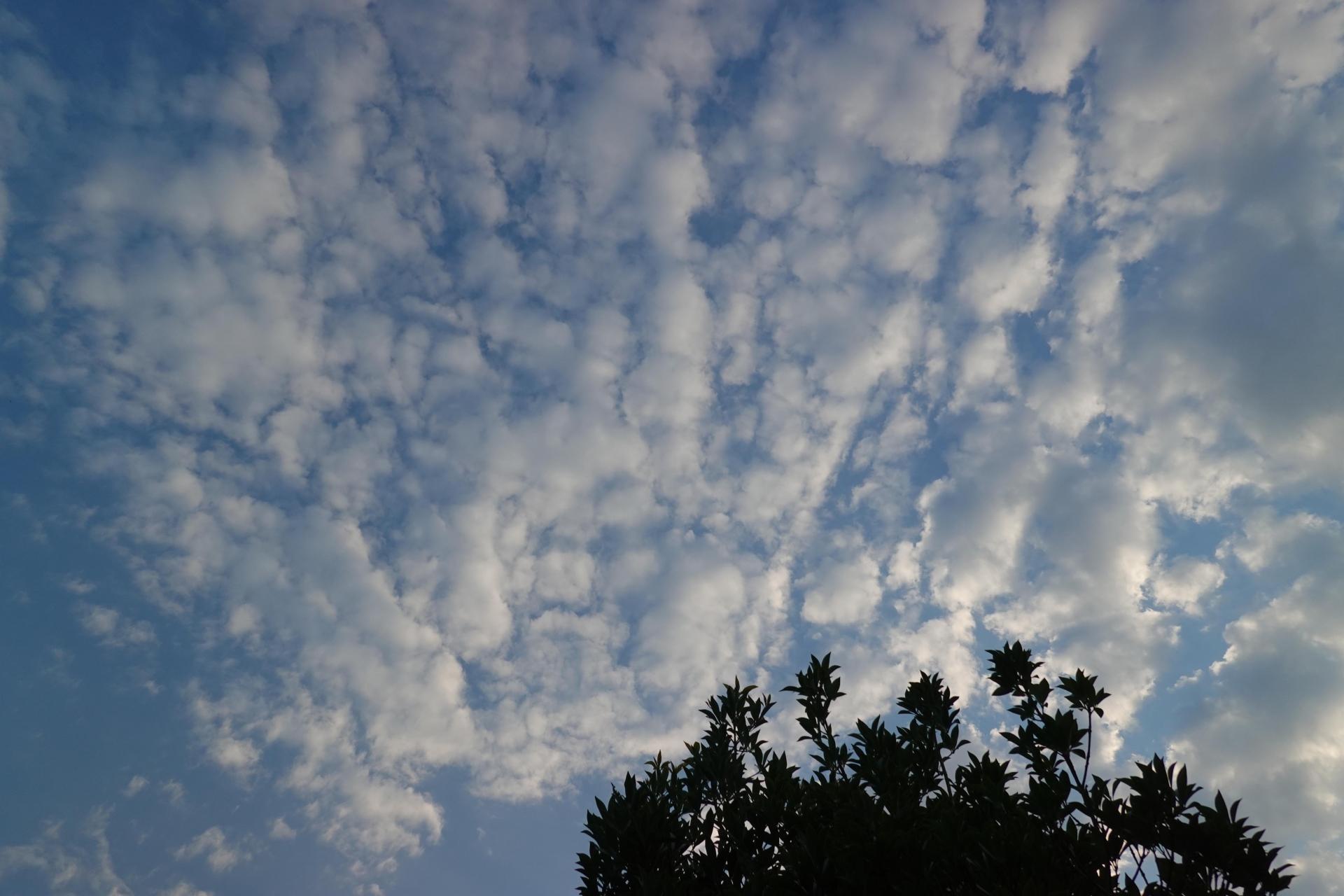 雲ありの晴れ