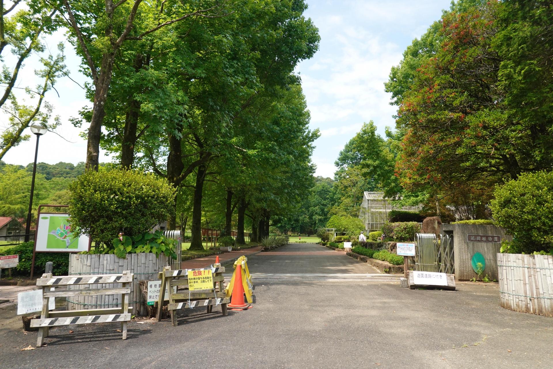 延岡植物園入口