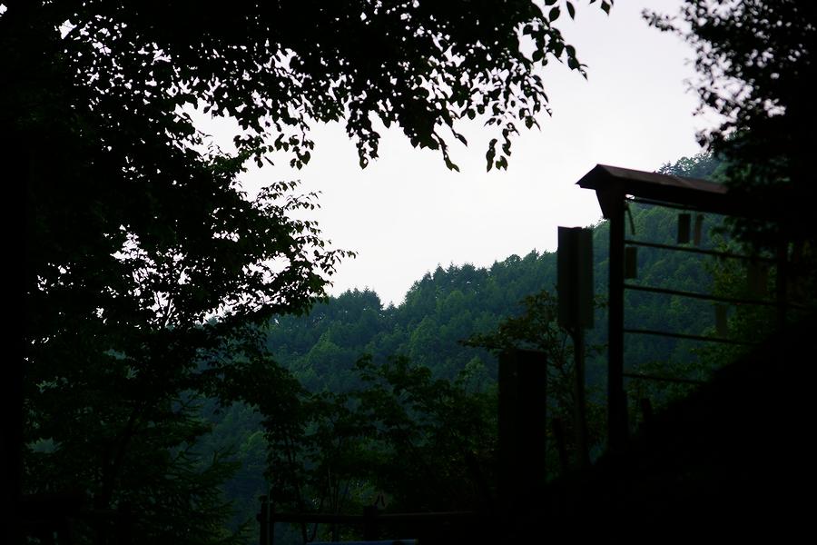 DSC07302(曇天).JPG