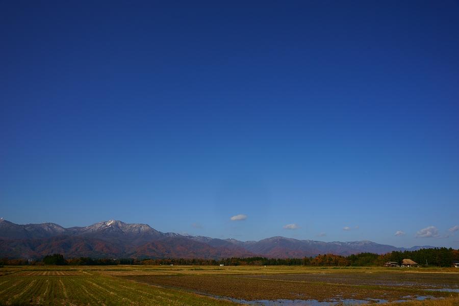 DSC02916(曇天).JPG