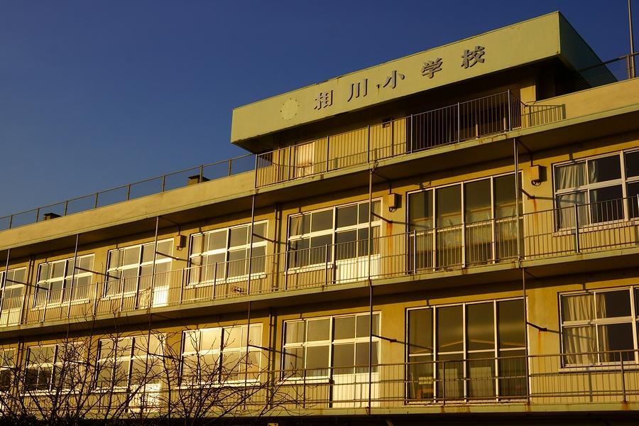 DSC02952(曇天).JPG