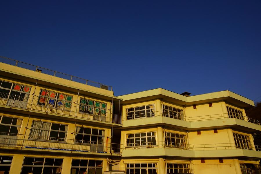 DSC02954(曇天).JPG