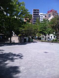 SH3803090001.jpg
