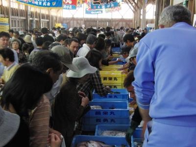 筒石漁港の魚市