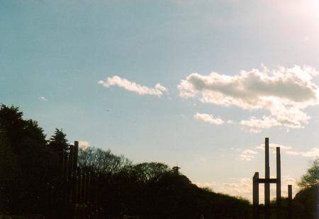 初春の公園4