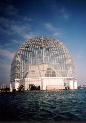 水族館(LOMO LC-A)