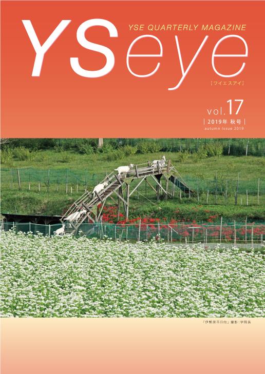 YSeye17号