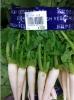 野火止産野菜