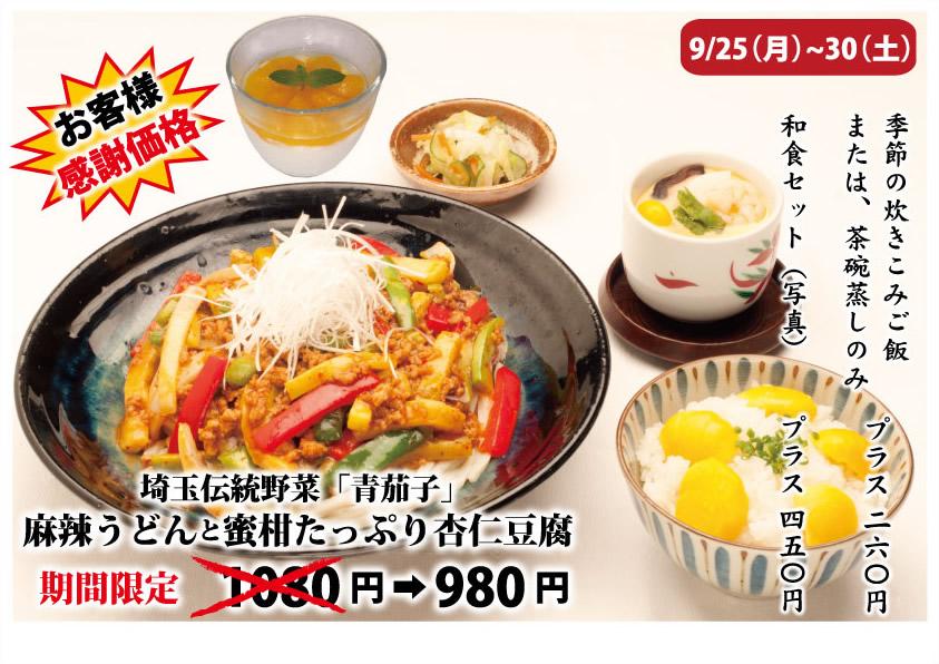 埼玉伝統野菜 青茄子 麻辣うどん