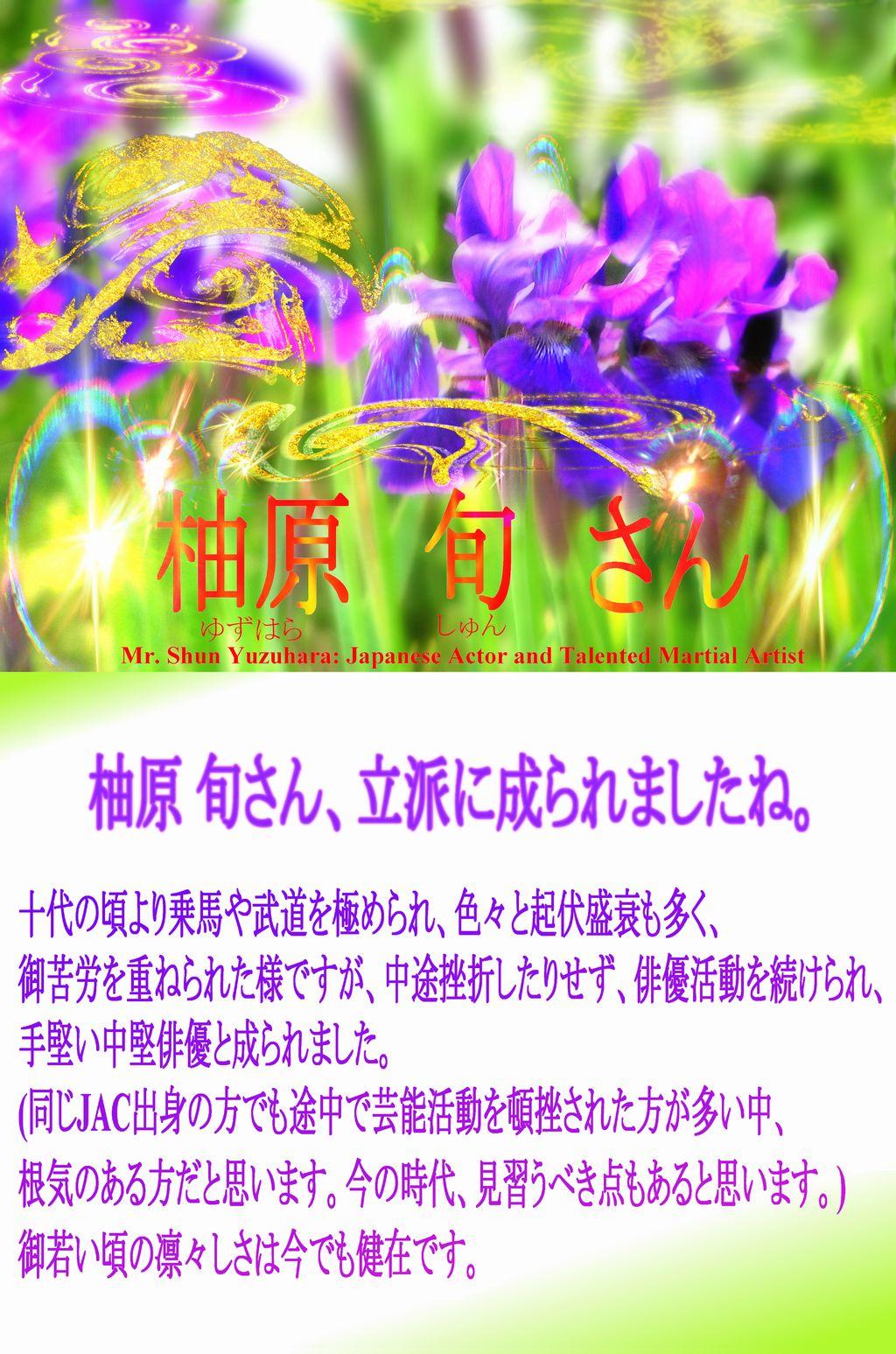 花のアヤメの写真