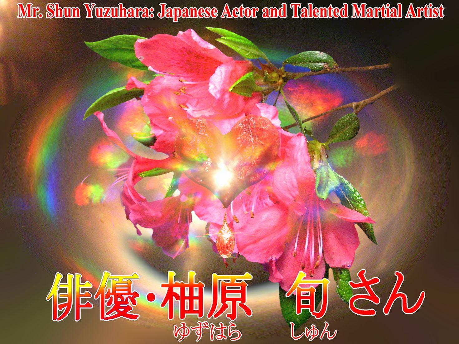 花のツツジの写真