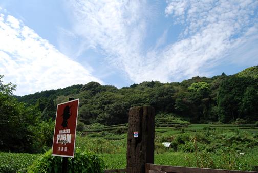 hirasawa farm