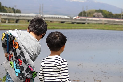 s-20190503-kikyounohiIMG_1631.jpg