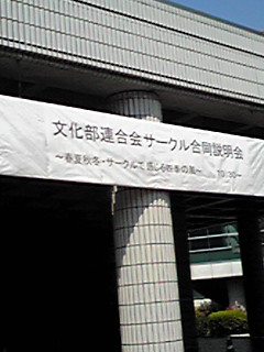 090407_1300~01.JPG