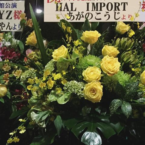 日本武道館公演「日本の銀杏好きの集まり」
