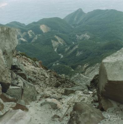 Japan-island005 copy.jpg