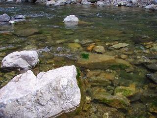 静まりかえった川