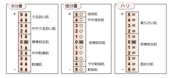 スキンチェッカー 測定結果の目安