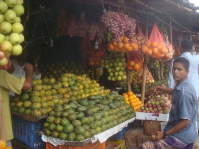 果物屋その1