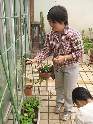 テクノ・ホルティ園芸専門学校(ボーダーの植栽)