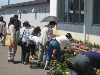テクノ・ホルティ園芸専門学校(母の日の販売会)  (3).jpg