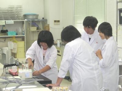 植物バイオテクノロジー(テクノ・ホルティ園芸専門学校) (4).jpg