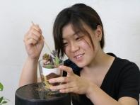 観葉植物の管理と利用(テクノ・ホルティ園芸専門学校) (9).jpg