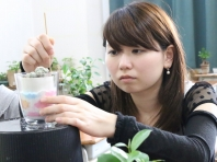 観葉植物の管理と利用(テクノ・ホルティ園芸専門学校) (11).jpg