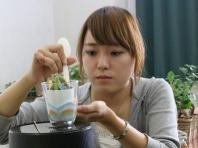 観葉植物の管理と利用(テクノ・ホルティ園芸専門学校) (12).jpg