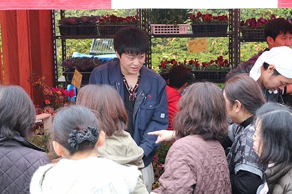 パンジー・ハボタン・寄せ植えの販売(テクノ・ホルティ園芸専門学校) (8).jpg