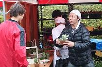 パンジー・ハボタン・寄せ植えの販売(テクノ・ホルティ園芸専門学校) (10).jpg