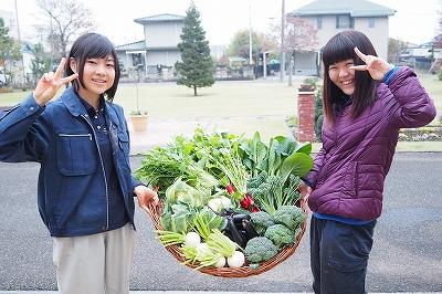 収穫野菜(テクノ・ホルティ園芸専門学校) 1.jpg