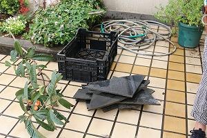 テクノ・ホルティ園芸専門学校 (6).jpg