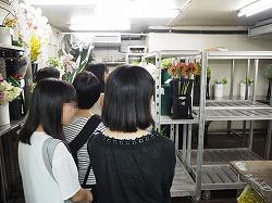 テクノ・ホルティ園芸専門学校スクーリングフラワー10.jpg