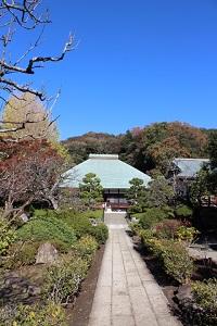 鎌倉見学4.jpg