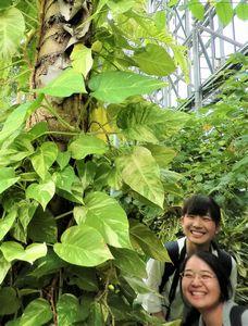 11 テクノホルティ園芸専門学校 夢の島 見学.JPG
