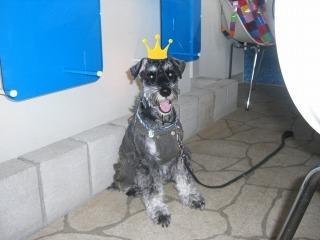 アロン王子