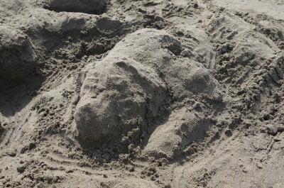 砂の芸術、人と犬画像