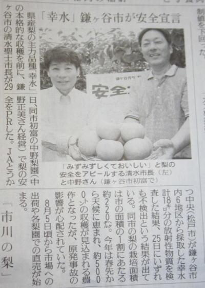 鎌ヶ谷市の梨、放射性物質不検出の読売新聞記事