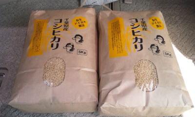 アイガモ農法米画像
